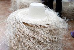 トキヤ草で編まれたパナマハット
