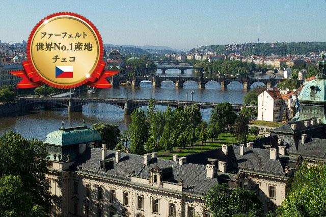 世界中で高い評価を獲得するチェコ産のファーフェルト