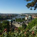 チェコの歴史とファーフェルト
