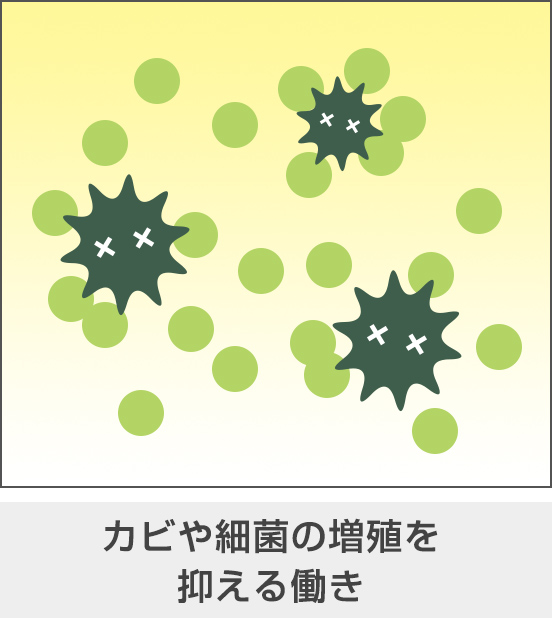 カビや細菌の増殖を抑える働き