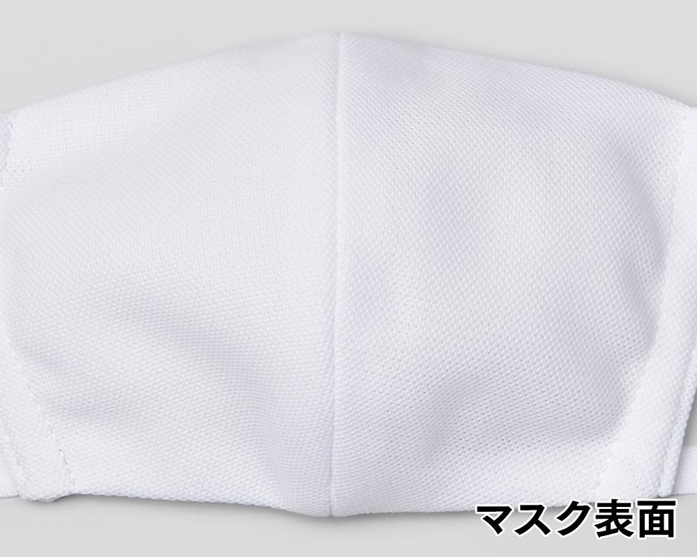 【日本製】制菌・消臭・洗えるエリプリマスク