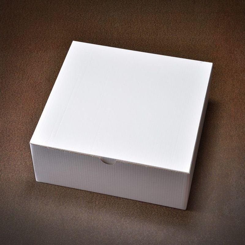 ハット専用収納箱(白)